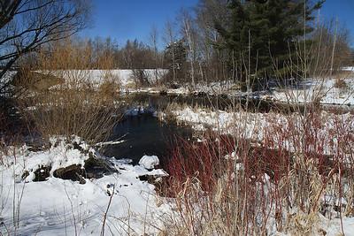 Wisconsin spring Apr2013 29
