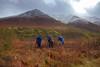 Wild Alaskan photographers in their natural habitat
