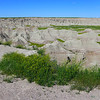 One of my first glimpses of the Badlands.  The green stuff is typical only during a comparatively short time of the year, we are told.  The yellow is yellow sweetclover.  It is all over.  Apparently if cows get a hold of moldy sweetclover, it contains coumarin, which can be metabolized to dicoumarol (?spelling), an anticoagulant.  It is popular to put up beehives near the sweetclover to make sweet honey.<br /> June 15, 2014