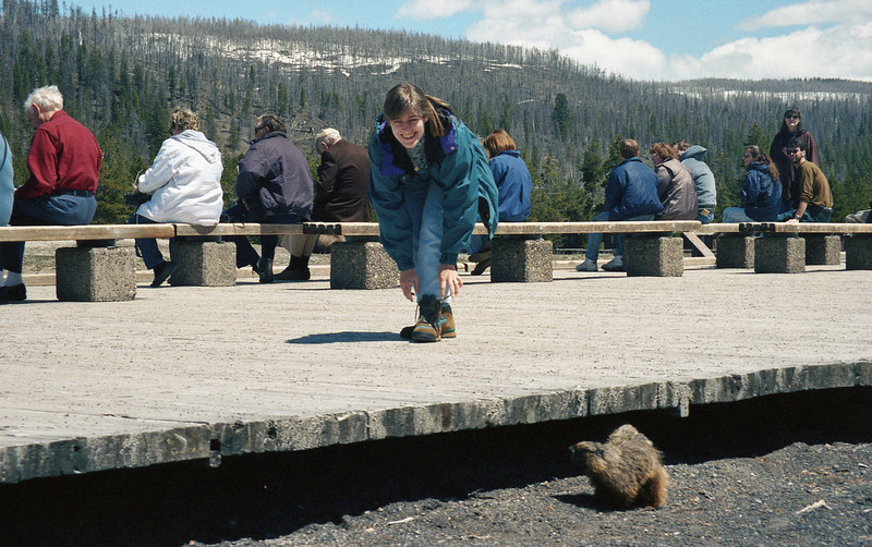 Barb tying shoes..while marmot plans its attack on the tourists...