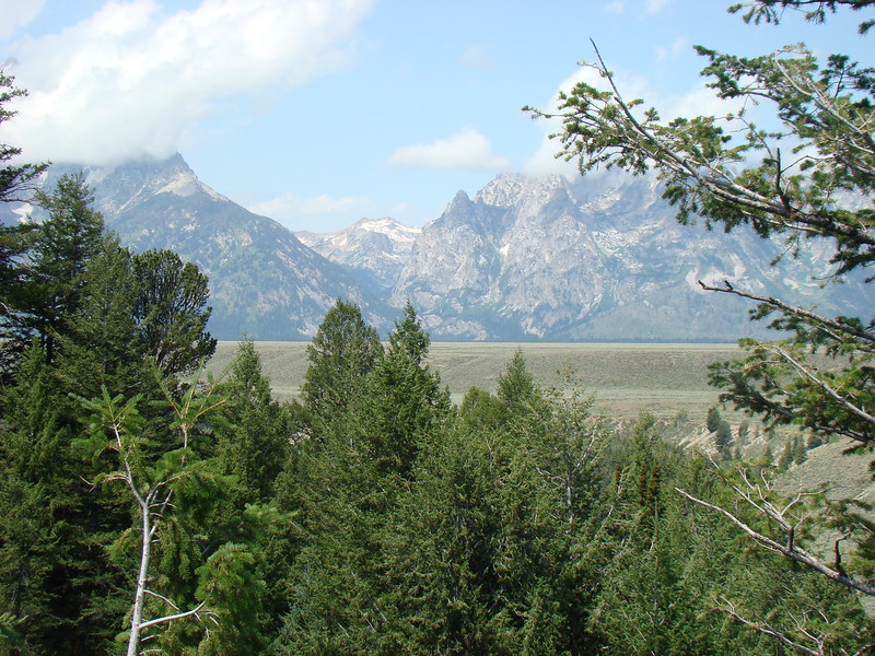 A view of the Grand Tetons from a road pull off.