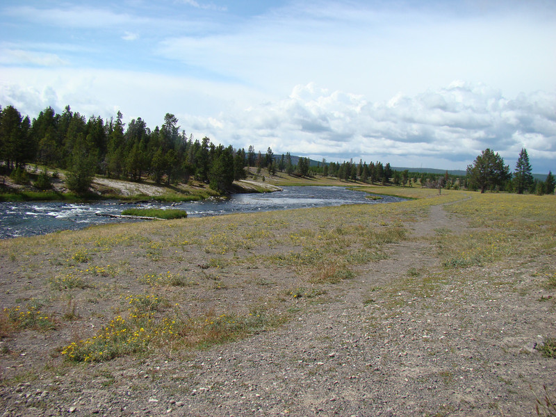 This is one of the many rivers in Yellowstone and you can see the geyser run off water in the background.