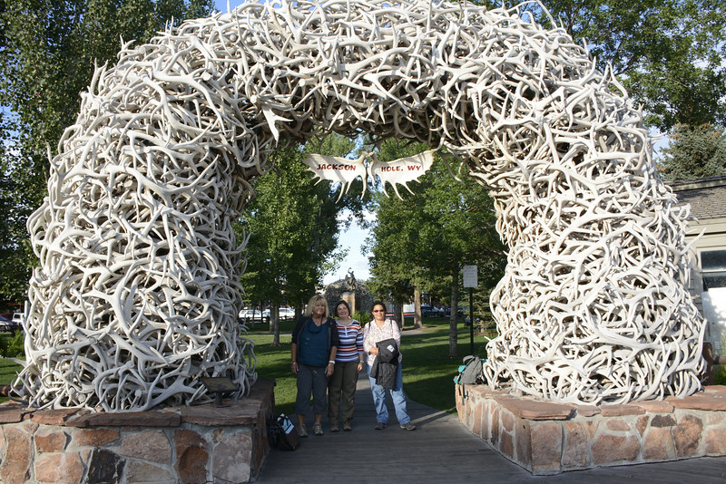 Jackson, Wy....Note all the antlers.