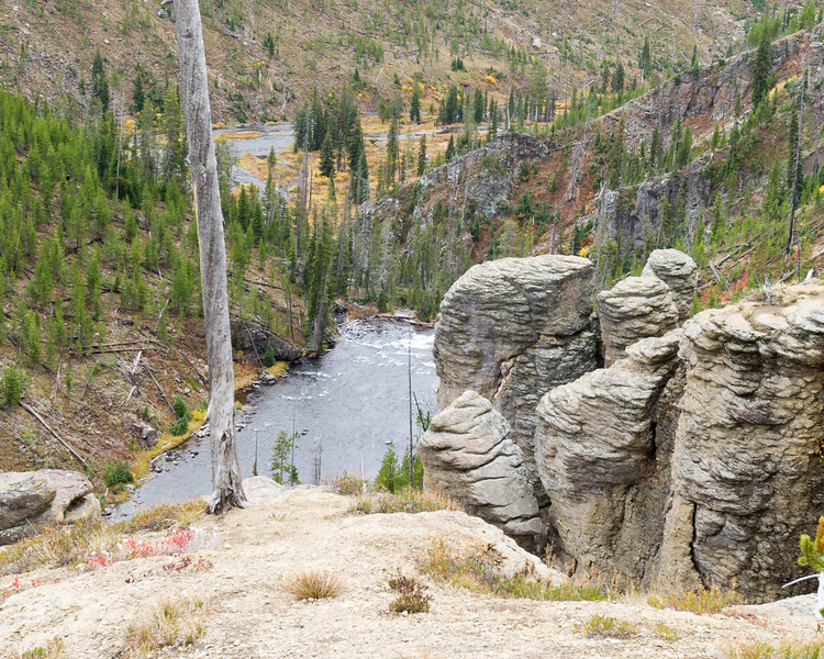 Lewis River  Yellowstone  National Park