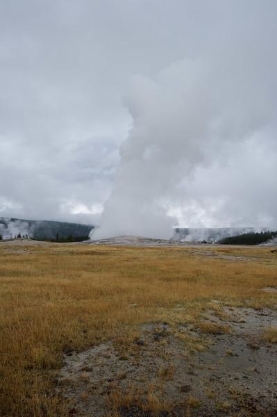 Old Faithful Lodge Yellowstone  National Park