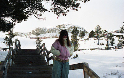 Barb near mammoth hot springs