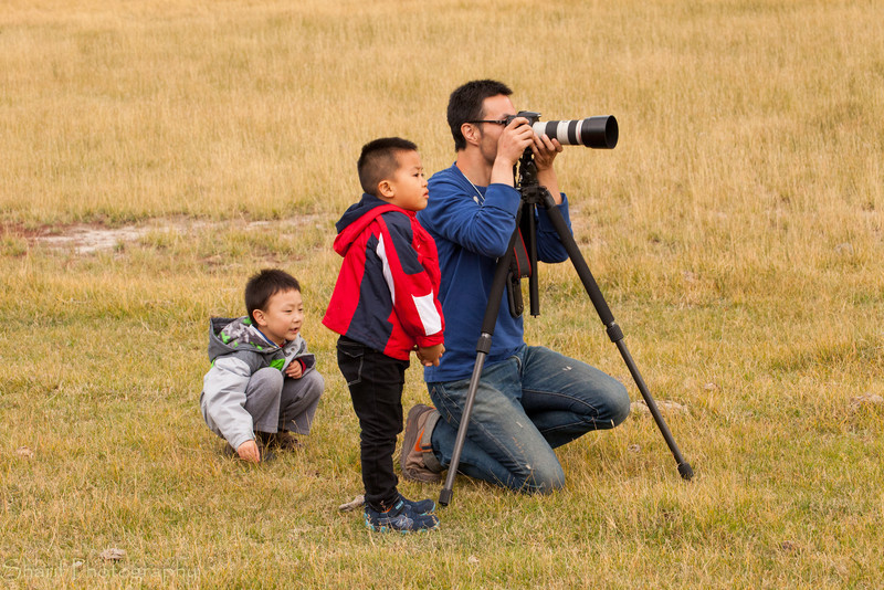 This father and sons team of photographers beat out pictures of elk and bison today. So cute  it almost made me regret not being a father. Almost.
