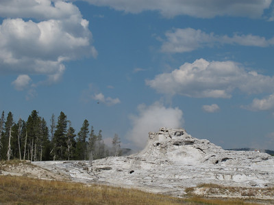 Yellowstone and Grand Tetons, 2011