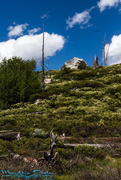 Hike to Taggart lake