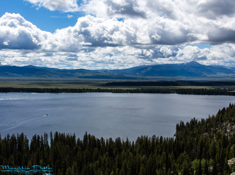 View from Inspeation Point over Jenny Lake (Elevation 7200 FT)