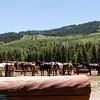 A-OK Ranch