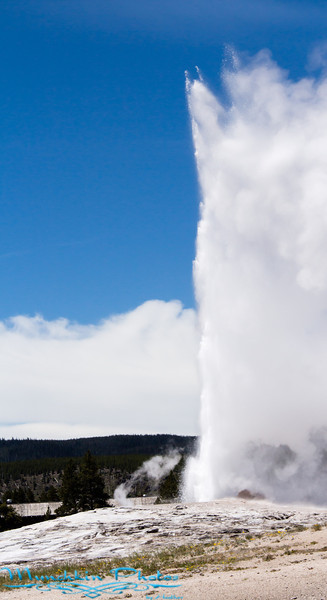 back view of old faithful