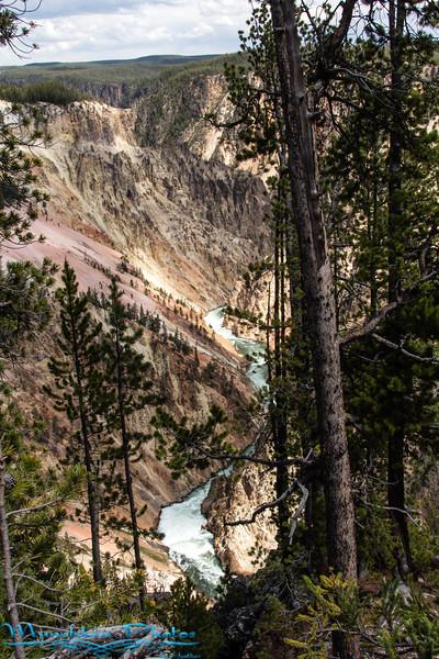 Yellowston Canyon