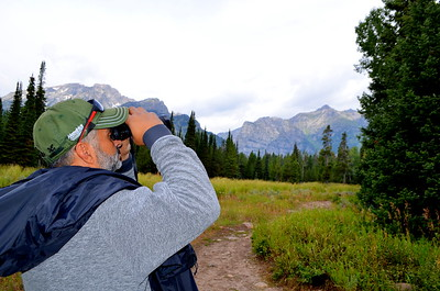 Brian spots an Osprey Nest atop a tree in the Laurance S. Rockerfeller Preserve - with Grand Teton National Park