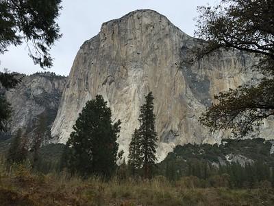 Yosemite Camping 2015