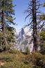 Yosemite_2007-255