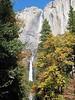 Fall Yosemite Falls
