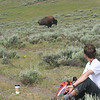 the bison decided if they would let you sit and take a break...this one decided he needed the path that Zack was sitting on