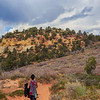 On the Observation point trail - Zion National Park - Utah