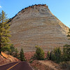 Checkerboard Mesa - Zion National Forest