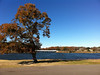 Lake Athens marina - pretty Fall colors.