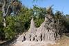 A huge termite mound.