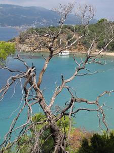 Tsougria Island