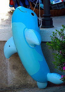 A sighting of the rare blue whale on the island of Lipari!