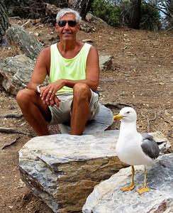 A bird and a bird brain - just kidding..... Ile de Porquerolles