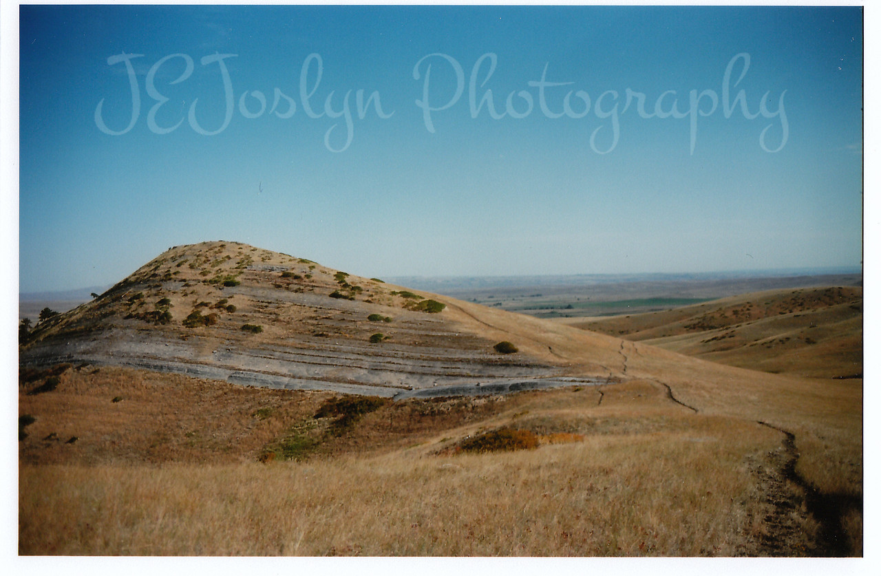 Chocolate Drop Hill, Eatons' Ranch, Wolf, Wyoming - Big Horn Mountains