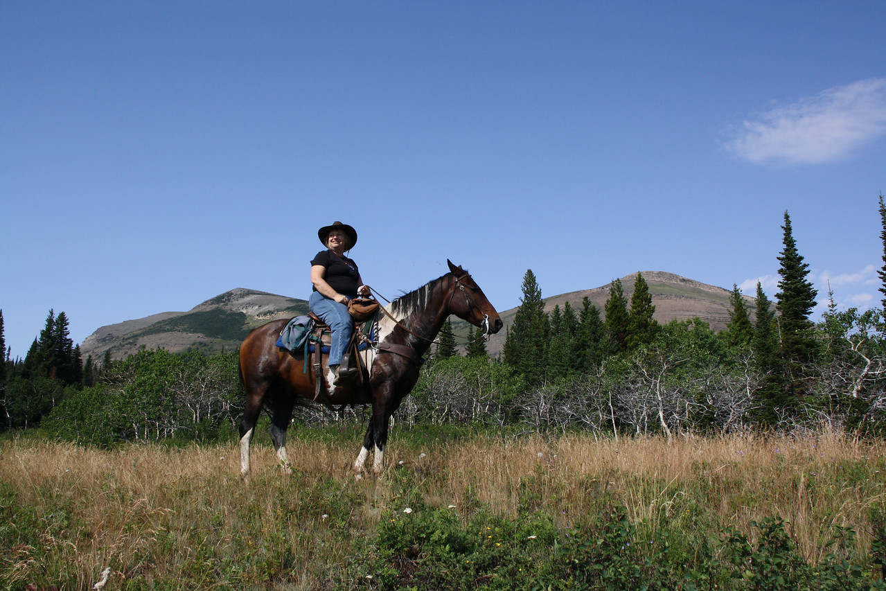 Glacier Park, MT.  This is Spotted Bear.  The horse I rode on two rides on the Blackfeet Reservation.  A really nice horse ride, the land was beautiful and great guide, Marvin.  We saw a yearling grizzly bear.   8-2009