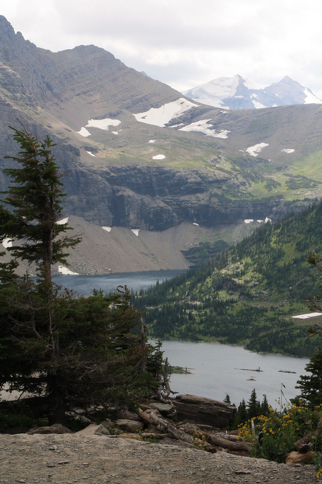 Glacier Park - Logan Pass  - Hidden Lake    8-2009