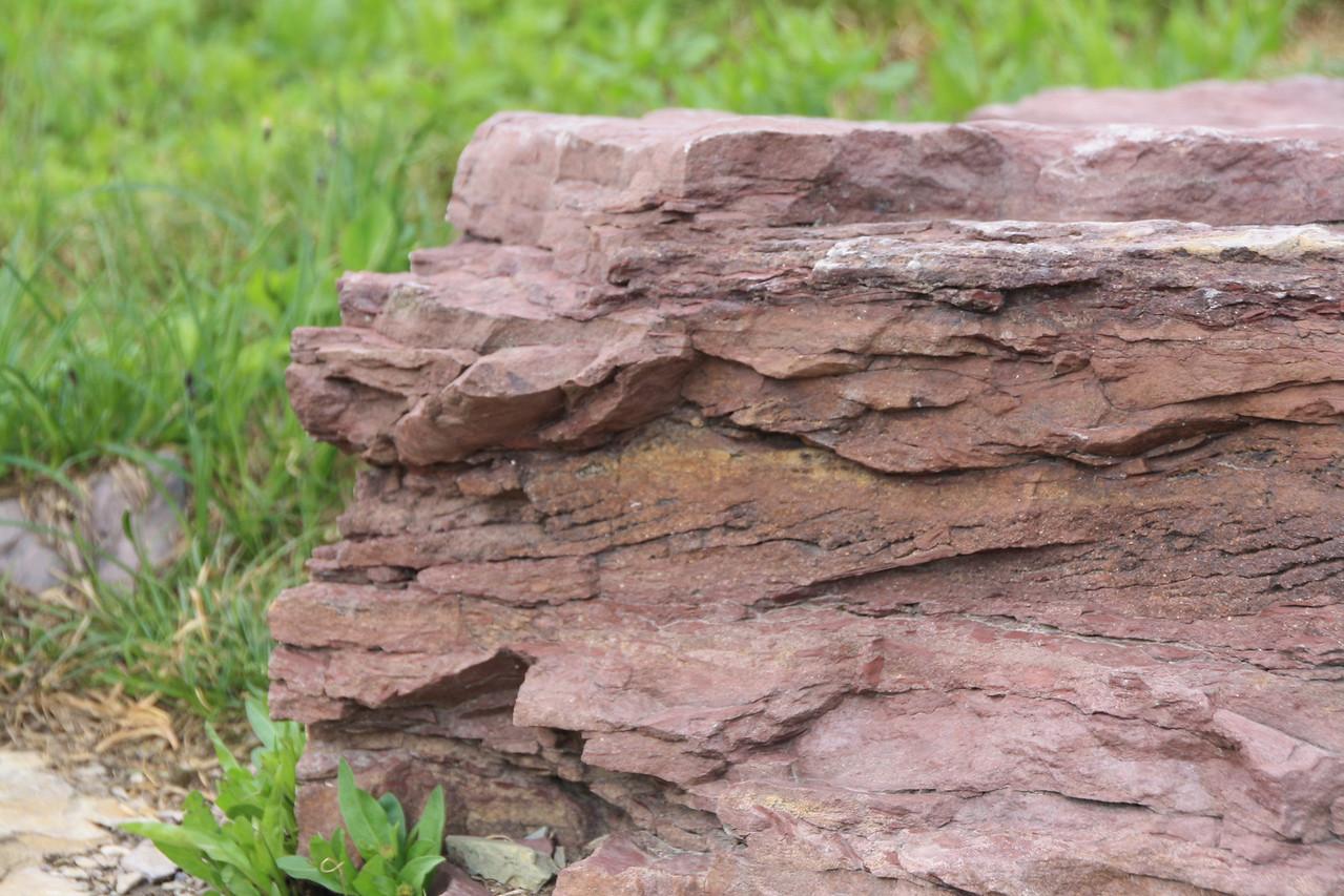 Glacier Park - Logan Pass structures  Rock is Grinnell argillite, or red shale.   8-2009