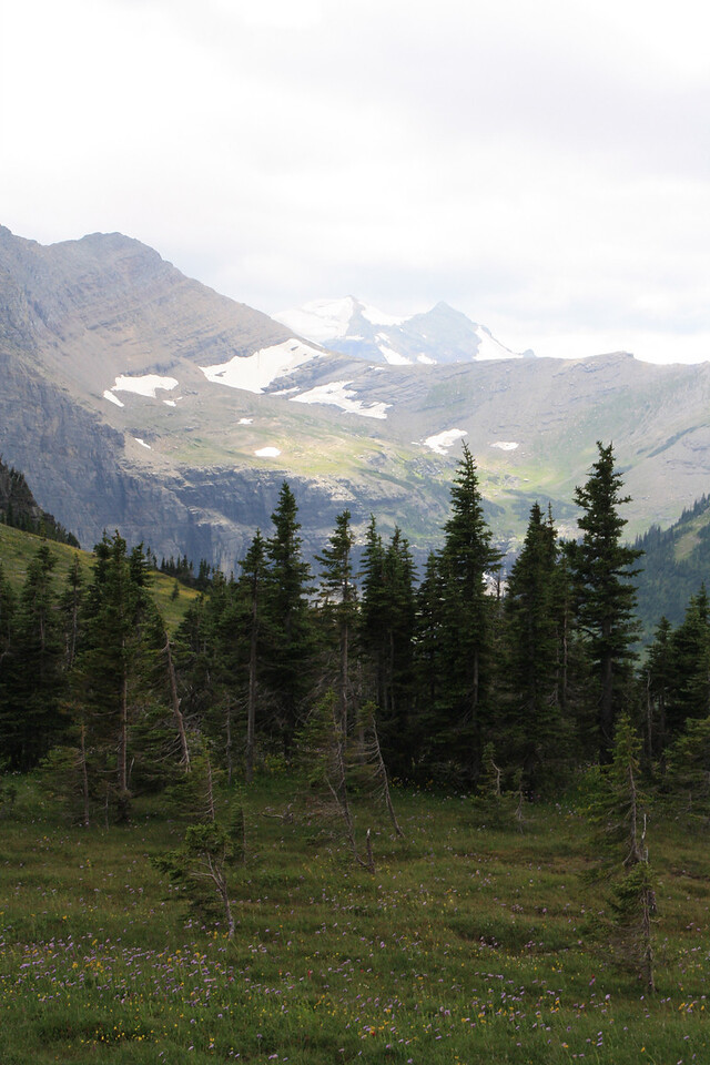 Glacier Park - Logan Pass - Hidden Lake.   8-2009