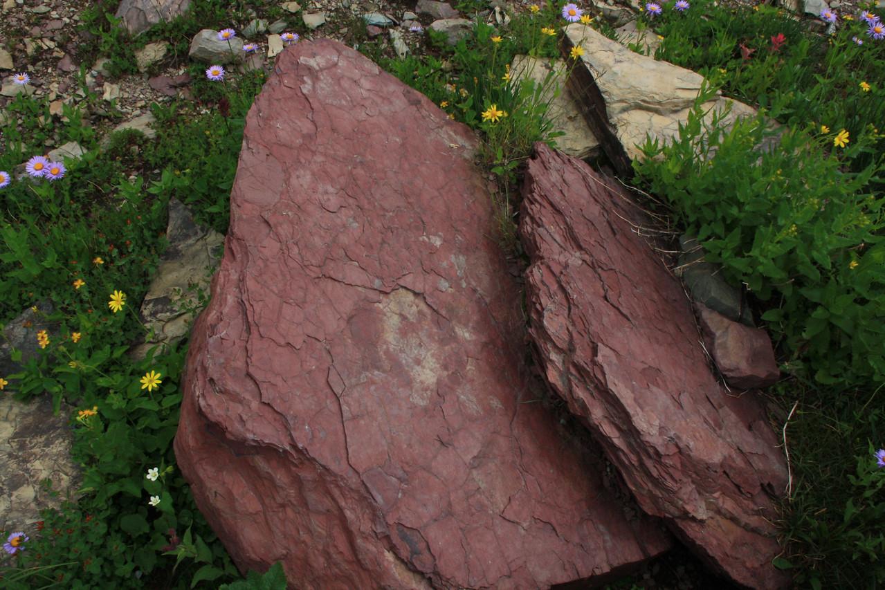 Glacier Park - Logan Pass structures, Grinnell argillite, or red shale.   8-2009