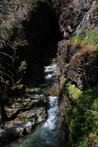 Glacier Park, MT.  Sun Rift gorge, not far from Swiftcurrent area.  2009