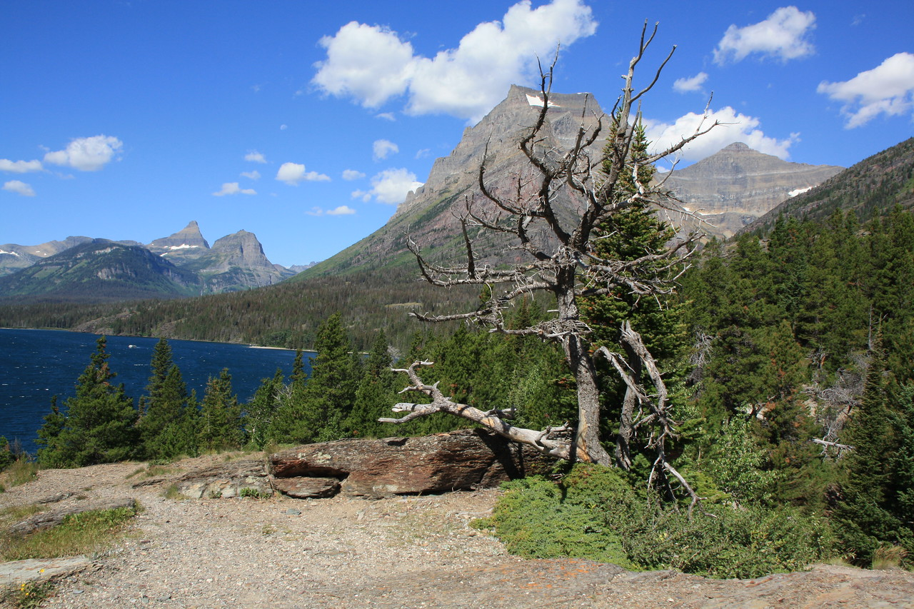 Glacier Park, MT.  Sun Rift trail, not far from Swiftcurrent area.  2009