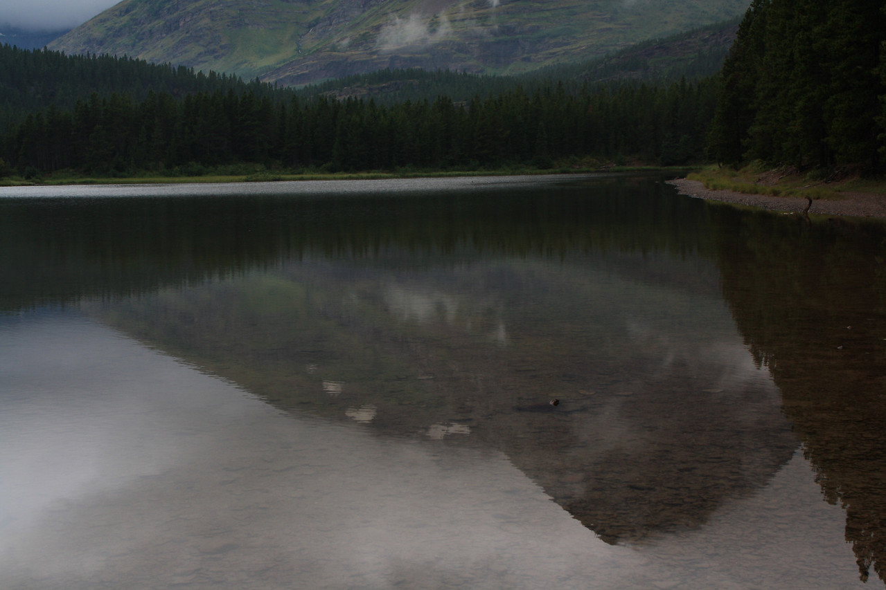 Glacier Park.  Fishercap Lake, near Swiftcurrent Lake, study in reflections.   8-2009