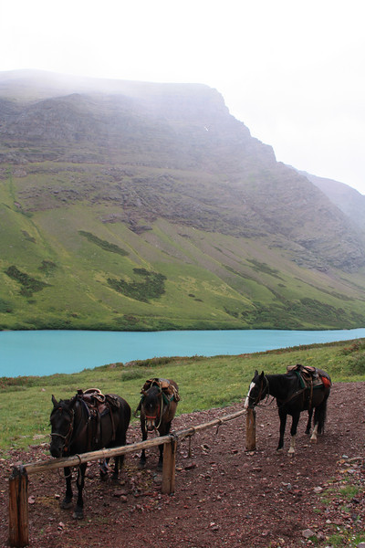 Glacier Park, MT.  Cracker Lake, a 6.5 mile horse ride to this great view.  Cracker Lake is located on the crater side of Siyeh Mountain.  Rained half of the day.  8-2009