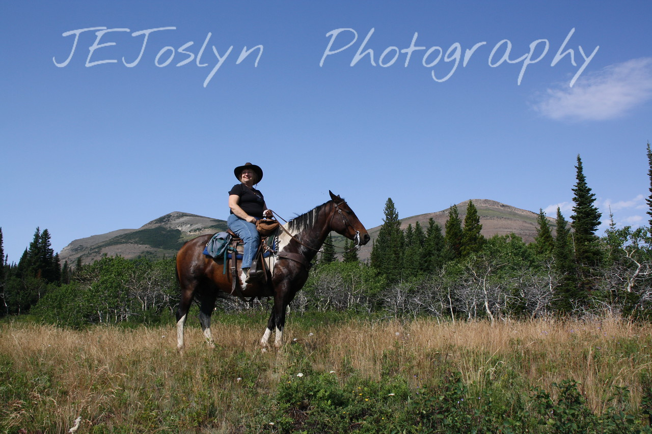 Glacier Park, MT.  This is Spotted Bear.  The horse I rode on two rides on the Blackfeet Reservation.  A really nice horse ride, the land was beautiful and great guide, Marvin.  We saw a yearling grizzly bear and the Plains from an angle I had never seen from before.   8-2009
