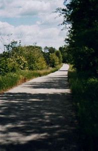 The Trail - Bike Ride, June, 2006, Mesabi Trail, northern Minnesota