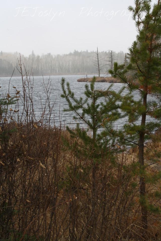 Gunflint Trail area, Minnesota  October 30, 2009, Swamper Lake