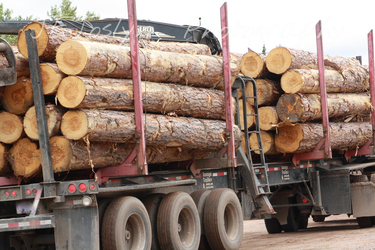 Mountain Iron - fully loaded Lumber Truck