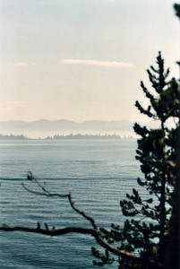 Yellowstone Lake, early morning fog.