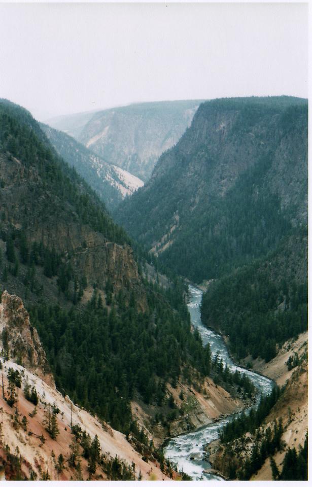 Yellowstone River rambling through Yellowstone's Grand Canyon.