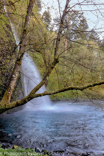 Photo Trip April 2014 Columbia River Gorge