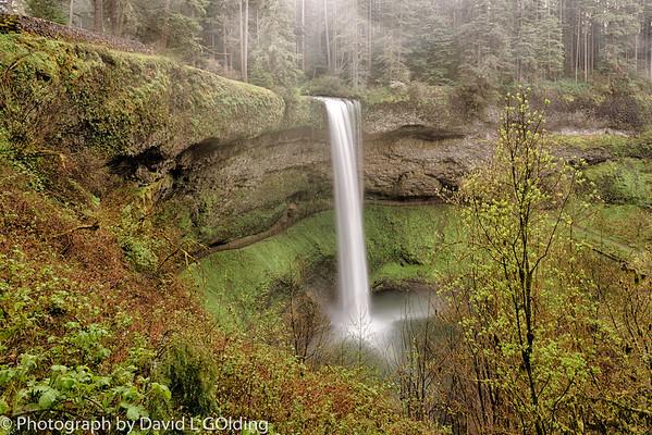 Photo Trip April 2014 Silver Creek Falls