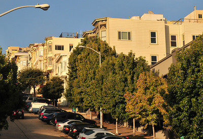 San Fran houses bask in the early morning sun
