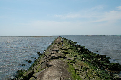 the seawall