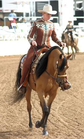 Arabian horse show009
